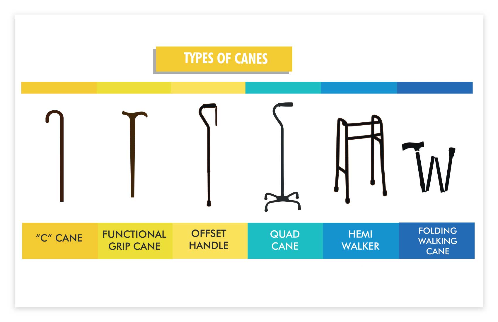 Types Of Canes