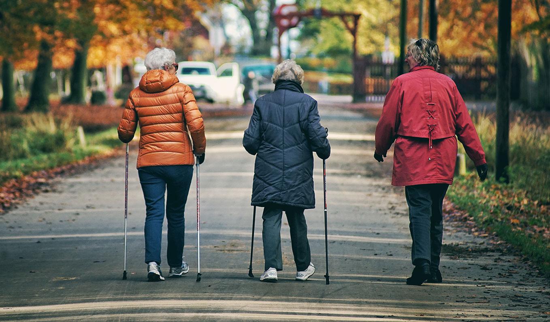 3 Senior Women Walking