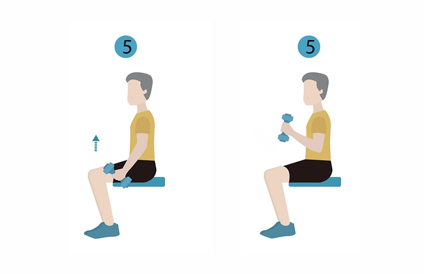 Seated-Bicep-Curls